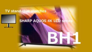 BH1 TVstand IC