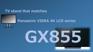 GX855 TVstand IC
